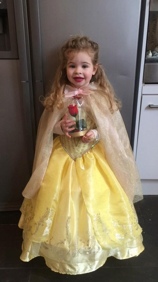 Belle/ world book day parade/ beauty & the beast dress up
