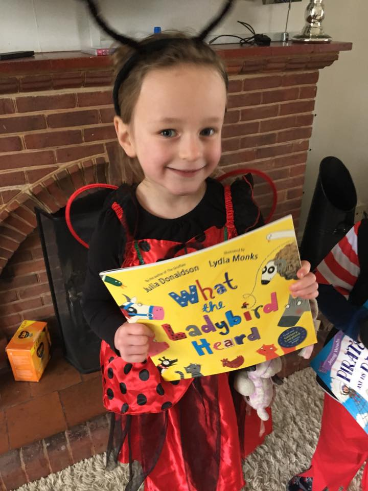 WHAT THE LADYBIRD HEARD/ WORLD BOOK DAY PARADE
